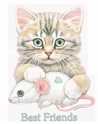 Best Friends Cat & Mouse
