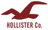 Hollister Co.