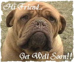 Hi Friend Get Well Soon