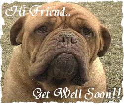Hi Friend Get Well Soon