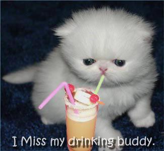 Miss My Drinking Buddy