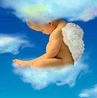 New Baby Angel