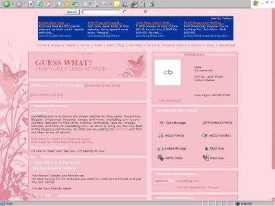 Girly Butterflies Myspace Layout